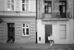 (Roman Zawadzki) Tags: 35mm iso400 poland polska hc110 d hc110b olympusxa1 rolleifilm rpx