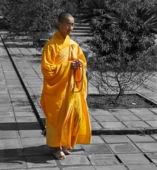 Study in Orange (dcnelson1898) Tags: blackandwhite orange color photoshop southeastasia buddhist experiment monk images vietnam layers hue
