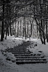 (allanimal) Tags: snow weather architecture stairs architecturalfeature stockcategories afszoomnikkor2470mmf28ged