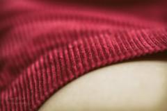 soft stripes (l'imagerie potique) Tags: stripes skirt jupe corduroy macromondays poeticimagery limageriepotique