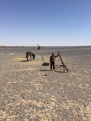 Erg Chebbi (pasquib) Tags: africa portrait people sahara morocco maroc enfant dsert jeux