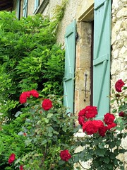 Les volets verts (LILI 296....) Tags: rose rouge pierre maison mur rosier volet