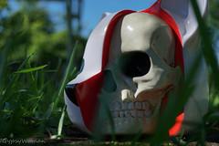 DSC03833 (IGypsyWoman) Tags: toy photography vinyl arttoy kickstarter designervinyl lukecheuh