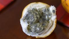 Granadilla half (Mo Khalifa) Tags: bogot colombia granadilla frog egg food fruit fruits tasty sweet natural