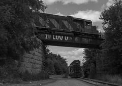 Over Under (Joseph Bishop) Tags: railroad cn train track under over tracks rail railway trains rails railfan overunder 3840 sor 580 emd gp382 496 4710 necr southernontariorailway rlhh burfordspur cnhagersvillesubdivision