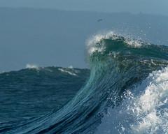 Tides (Felipe Seplveda R.) Tags: ocean nature water coast force pacific wave seashore pichilemu