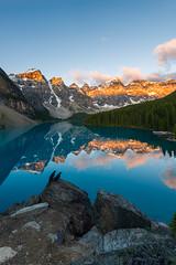 Sunrise of Ill Omen - Explored! (DeviantOptiks) Tags: lake mountains reflection calgary birds sunrise nikon alberta banff rockymountains lakelouise raven alpenglow morainelake canadianrockies monikadeviat explorealberta