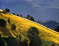 Long shadows (Katarina 2353) Tags: summer film landscape nikon europe serbia srbija umadija katarinastefanovic katarina2353