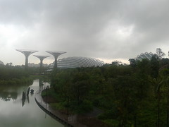 20130206_170229 (srbarnettuk) Tags: gardens by bay dome cloudforest gardensbythebay supertree
