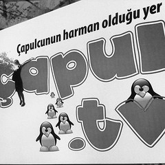 """Çapulcu TV or 'looter' as goes the activist adopted name, is the tv station they set up inside Gezi Park. With penguin logo for obvious reasons. (google to know why :) #turkishprotest #penguinprotest #istanbul #gezipark • <a style=""""font-size:0.8em;"""" href=""""http://www.flickr.com/photos/8861229@N06/9022265417/"""" target=""""_blank"""">View on Flickr</a>"""