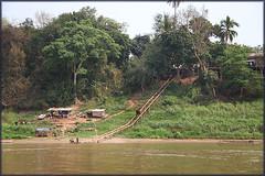 Mekong river_2708 (Dutch Simba) Tags: trip travel river buddhism caves laos mekong luangprabang excursion travelphotography pakou banpakou tamting