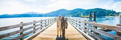 130629 - AM - Pano 3.jpg (JTobiason Photography) Tags: wedding june island washington anika orcasisland micah oddfellowshall 2013 jtobiason jtobiasonphotography orcaslisland