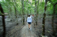 a brisk walk in the jungle (Rex Montalban Photography) Tags: mexico coba hss rexmontalbanphotography slidersunday