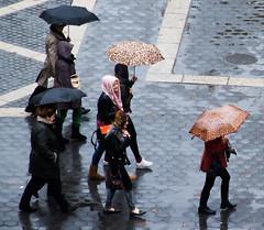 59th Street, rain (vpickering) Tags: rain umbrella rainy umbrellas 59th 59thstreet 59thst