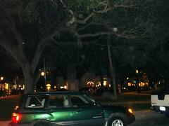 Savannah (robynlreynolds) Tags: angels ghosts orbs spiritphotography spiritguides griefhealing robynlreynolds