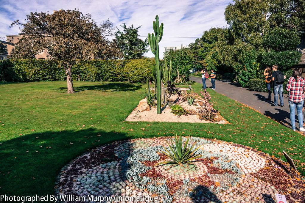 The Botanic Gardens In Dublin