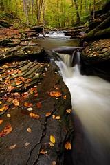 Ricketts Glen: Fall magic (Shahid Durrani) Tags: fall waterfall pennsylvania glen ricketts