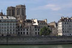 Notre Dame across the Seine (Jowisth) Tags: city summer paris france hot love water seine river de lights warm sommer july ile juli metropol frankrike seinen 2013