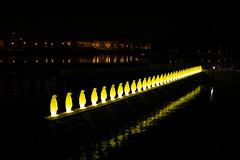 Tuci / Penguins (kaddafi210) Tags: show light art yellow festival penguin republic czech prague samsung praha 1855 signal kampa svetla tucnaci nx210 zluti signallightfestival