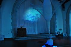 [27/5 - 25/11 2011] Victoria Vesna & Jim Gimzewski: Blue Morph
