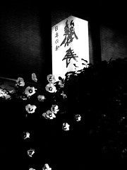 LauraSolt_Japan Town window_SpacesPlaces