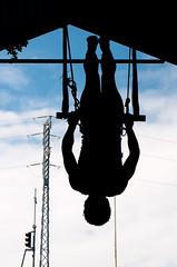 (Gabriel Loiola) Tags: brazil sky color colour colors azul riodejaneiro contraluz colours rj arte circo circus cu artes silhueta espetculo trapzio praadabandeira gabrielloiola escolanacionaldocirco