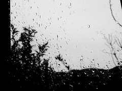 (Pacurrio) Tags: bw white mist black cold byn blanco water rain weather fog drops lluvia agua pentax negro drop fresh bn gotas gota fresco niebla frio climate drizzle x70 tiempo clima bruma llovizna sparking iciness helor chispeo