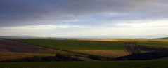 Downs Panorama (Worthing Wanderer) Tags: november downs nationalpark worthing saturday sunny local southdowns ironage hillfort chanctonbury cissbury findon