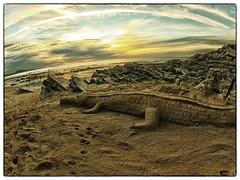 Bid-Art (Sand of Bidart) Tags: art beach sand sable crocodile plage beachart bidart artiste sandsulpture