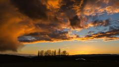colourful clouds (derhalbling) Tags: sunset cloud tree sonnenuntergang cloudy wolke colourful baum bunt kassel wolkig abendstimmung eveningatmosphere derhalbling staufenbergniedersachsen