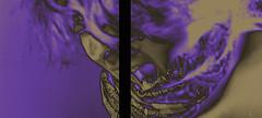 Andrücken (Angela Schlafmütze) Tags: portrait selfportrait viola viva violett liberazione versuche derschrei befreiung lebendig brüllen sperimentazioni urlare esistere existieren ilgrido andrücken