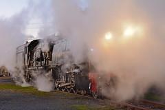 Garratt Photo Shoot (ants47) Tags: museum train railway australia steam canberra act locmotive garratt 3016 6029 arhsact