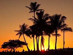 Sunset in Hawaii (802701) Tags: sunset hawaii waikiki oahu waikikibeach