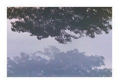 La simetra (Florencia Bianchi Granados) Tags: cinema santafe film argentina analog 35mm canon 50mm kodak 28mm 85mm cine 100mm rosario pelicula funes 1n 250d canon1n vision3