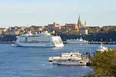 kungstradgarden_stockholm_sweden_aerial-3 (Grishasergei) Tags: sweden stockholm gipsy kungstragarden