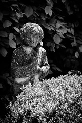 Barnsley Village (Simon Clare Photography) Tags: uk greatbritain england blackandwhite bw plants southwest english monochrome statue contrast digital garden mono nikon europe european village unitedkingdom britain eu monochromatic cotswolds shades explore gb british tones barnsley englishness simonclare d7200 simoncphotography sclarephoto
