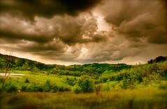 Salse di Nirano (Renato Morselli) Tags: verde natura vulcano emiliaromagna bolle oasi salse fenomeno nirano fanghi