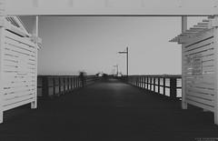 Redcliffe Jetty. (vito.chiancone) Tags: camera sunset sea blackandwhite bw white seascape black film monochrome vintage mood moody walk framed jetty horizon perspective australia brisbane bn bee gees queensland redcliffe blacknwhite bianco nero