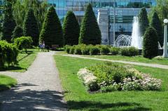 Central Memorial Park (Sherlock77 (James)) Tags: people tree calgary downtown path cenotaph centralmemorialpark