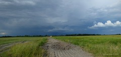 Before the storm (A. Meli) Tags: road summer cloud field june clouds landscape sommer ngc feld wolken beforethestorm feldweg tj tjkp t felhk nyr jnius mez vihareltt cloudsoverthefield landschafstbild wolkenberdemfeld mezfelett