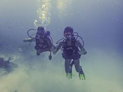 Mundo Submarino (Bajo presin) (Edson-Garcia) Tags: trip sea paisajes water underwater exploring diving reef virginislands caribe burbujas saltlife bajoelagua gopro seabottom