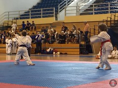 stefanou_15_5_2016_knockdown_79