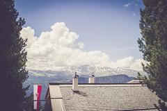 (c) Wolfgang Pfleger-6274 (wolfgangp_vienna) Tags: italien mountain berg val ulrich dolomiti sdtirol altoadige valgardena gardena ortisei dolomiten stulrich raschtz resciesa grlen sanktulrich