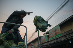 Flying Cauliflower (Jeff Williams 03) Tags: sunrise flying market cauliflower myanmar shanstate