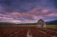 the vigilant (Javy Njera) Tags: naturaleza sun sol nature clouds landscape dawn vines vine paisaje amanecer nubes vigilant vid vias guardavias