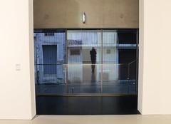 (Mackenzie Crumb) Tags: blue france reflection art window museum self montpellier