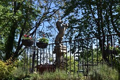 (marirenaa) Tags: trip plants flower tree green nature statue magic greece unicorn magical volos