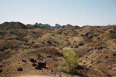 5R6K2491 (ATeshima) Tags: arizona nature havasu