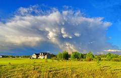 Dramatic cloud formations over the Prairies (peggyhr) Tags: canada alberta prairies peggyhr mammutusclouds level1photographyforrecreation redlevelno1 greenlevelno3 bluelevelno4 whitelevelno5 musictomyeyes~l1 artistoftheyear~l2~ infinitexposurel1 infinitexposurel2 infinitexposurel3 infinitexposurel4 dsc05985ax