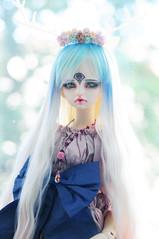Ms Dragon :D (Athena Roseanna Tse) Tags: doll dragon bjd dim abjd kassia balljointeddoll dollinmind